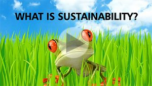 Sustainability western faculty resources website neon leon video thecheapjerseys